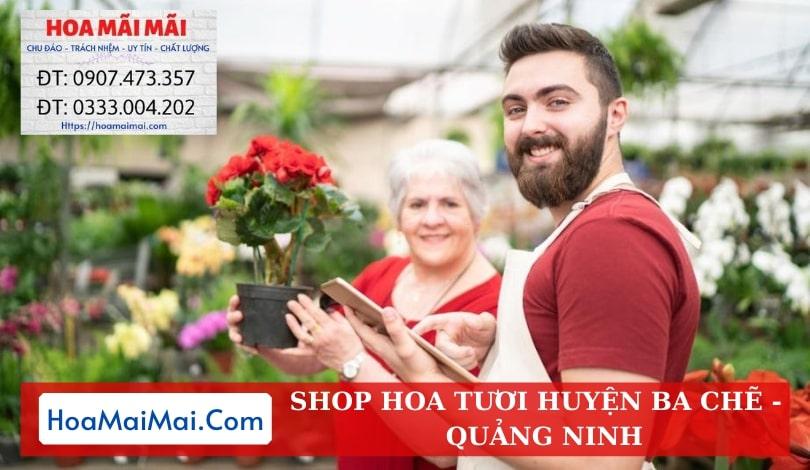 Shop Hoa Tươi Huyện Ba Chẽ - Điện Hoa Quảng Ninh