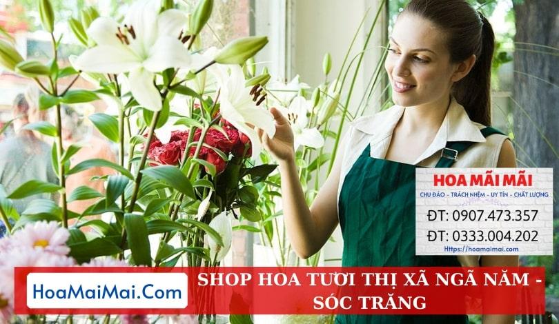Shop Hoa Tươi Thị Xã Ngã Năm - Điện Hoa Sóc Trăng