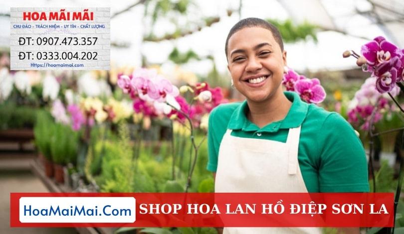 Shop Hoa Lan Hồ Điệp Sơn La - Điện Hoa Sơn La