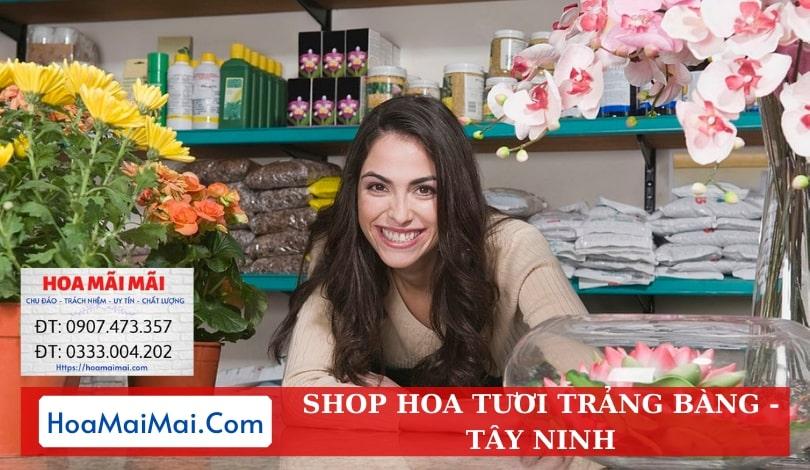 Shop Hoa Tươi Trảng Bàng - Điện Hoa Tây Ninh