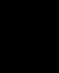 Dipasch Logo