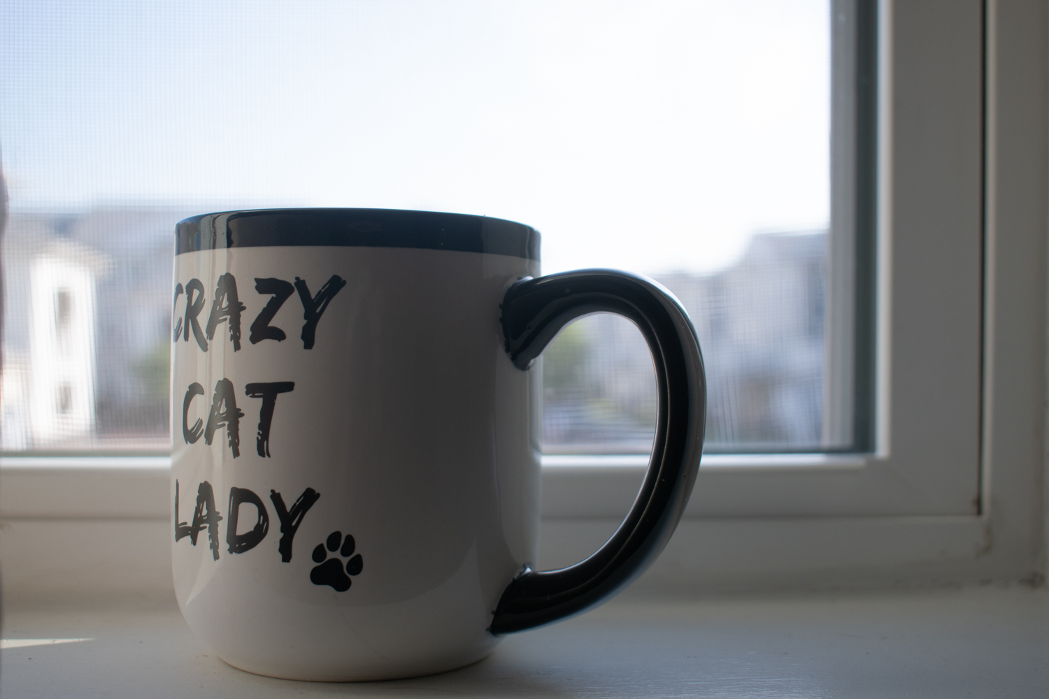 A crazy cat lady mug in my old apartment's window.