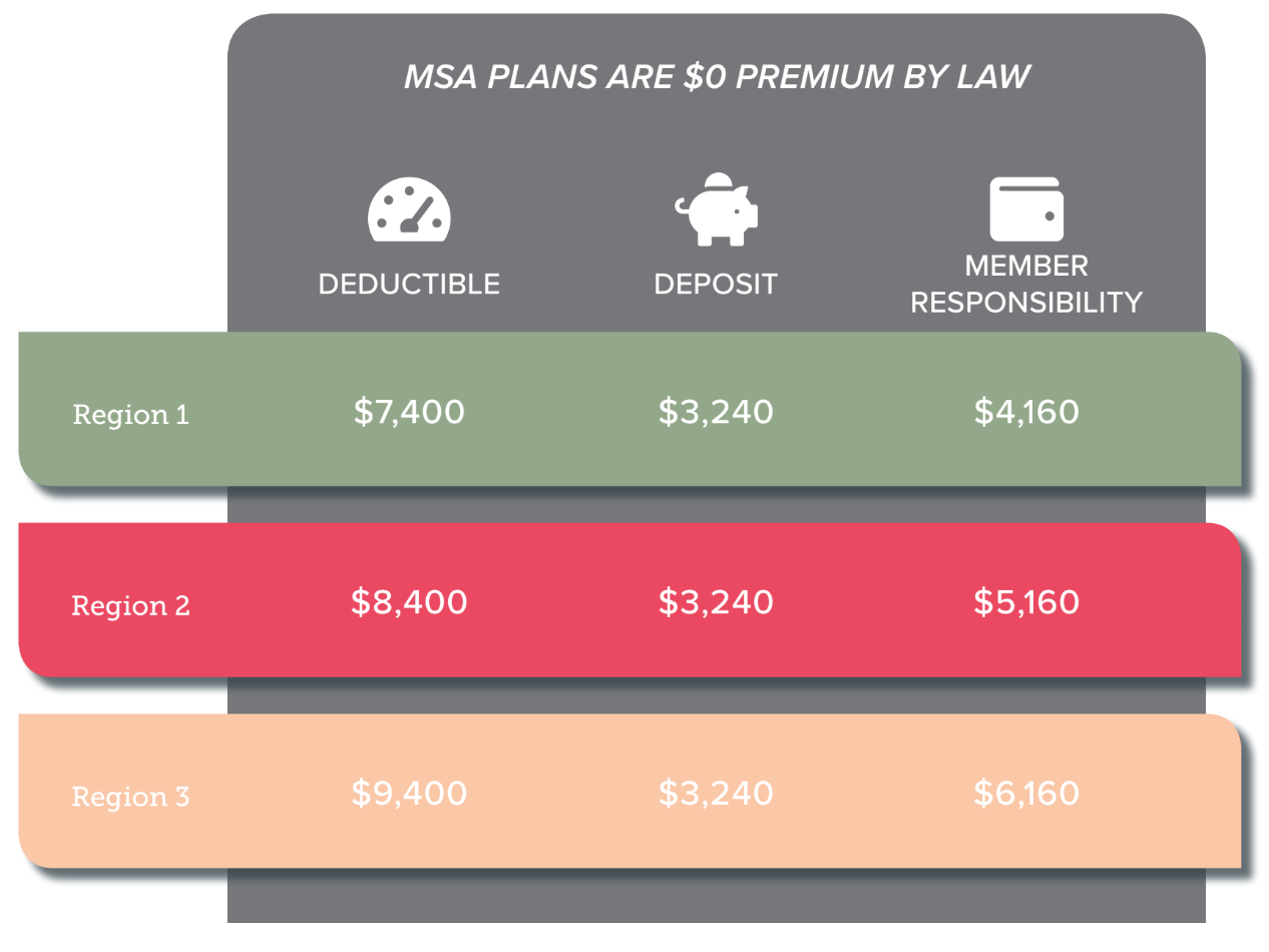 2020 Lasso Healthcare MSA benefit structure