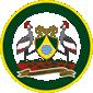 Nacico partner _Citycouncil logo