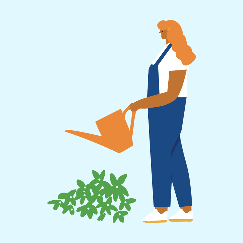 person watering plant.