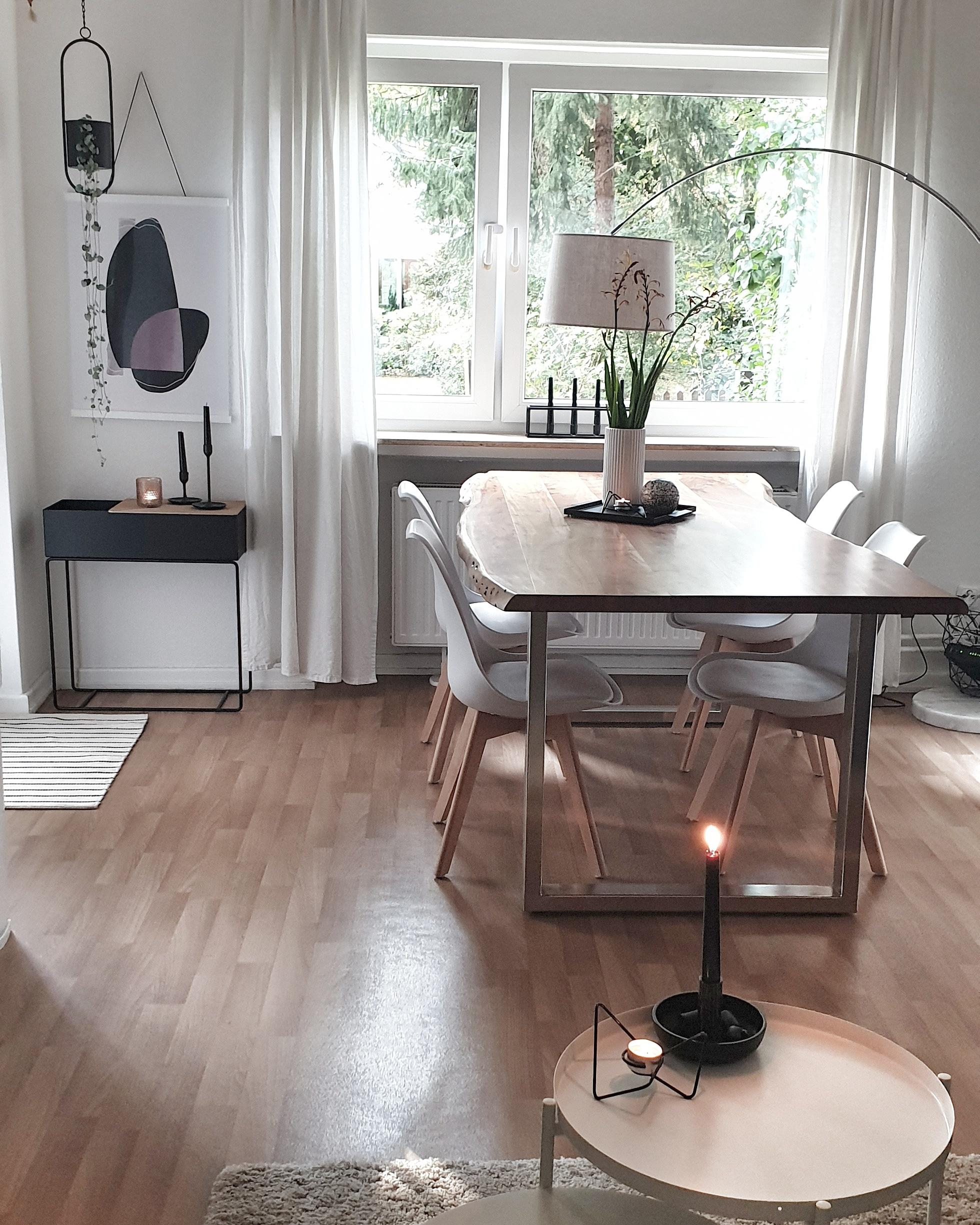 Wohnen, Pflanze, Naturholz, Weiß, Skandinavisch, Dekoration, Tisch, Stuhl