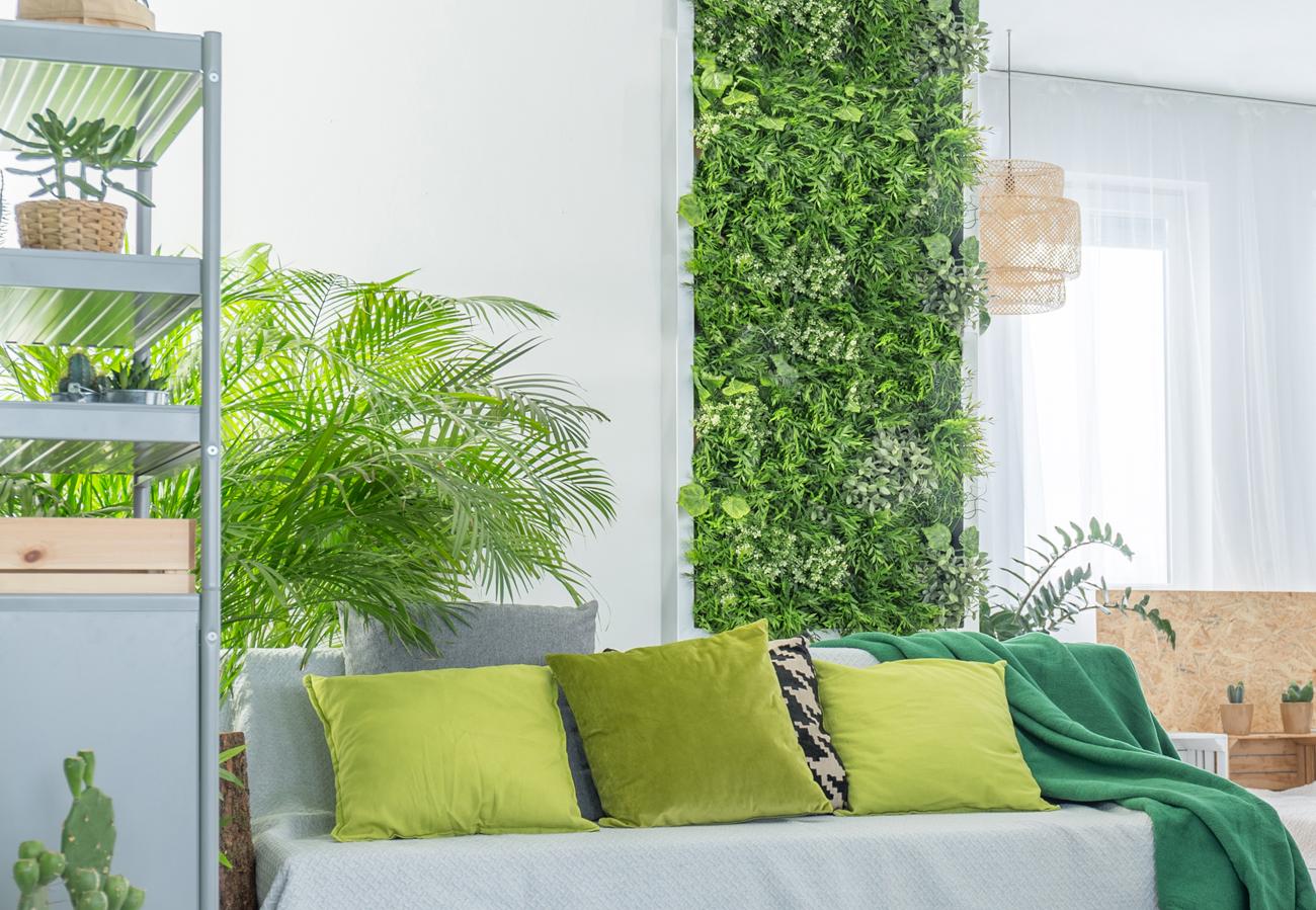Sichtschutz aus Pflanzen im Wohnzimmer