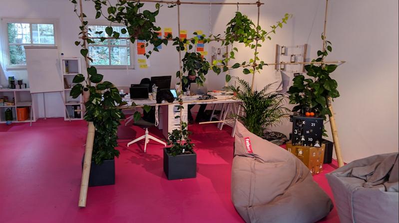 Sichtschutz aus Pflanzen im Büro