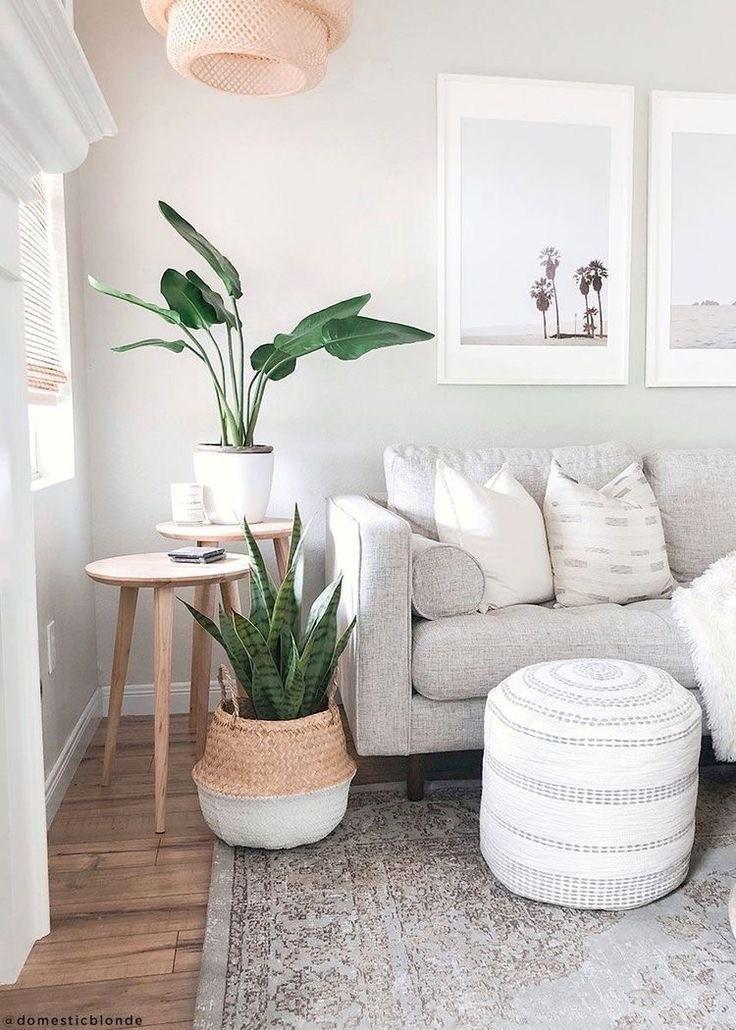 Zimmerpflanzen im Wohnzimmer. Gemütliches Sofa hell
