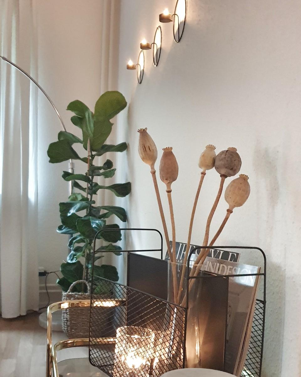 Wohnen, Pflanze, Naturholz, Weiß, Skandinavisch, Dekoration, Stuhl, Schrank