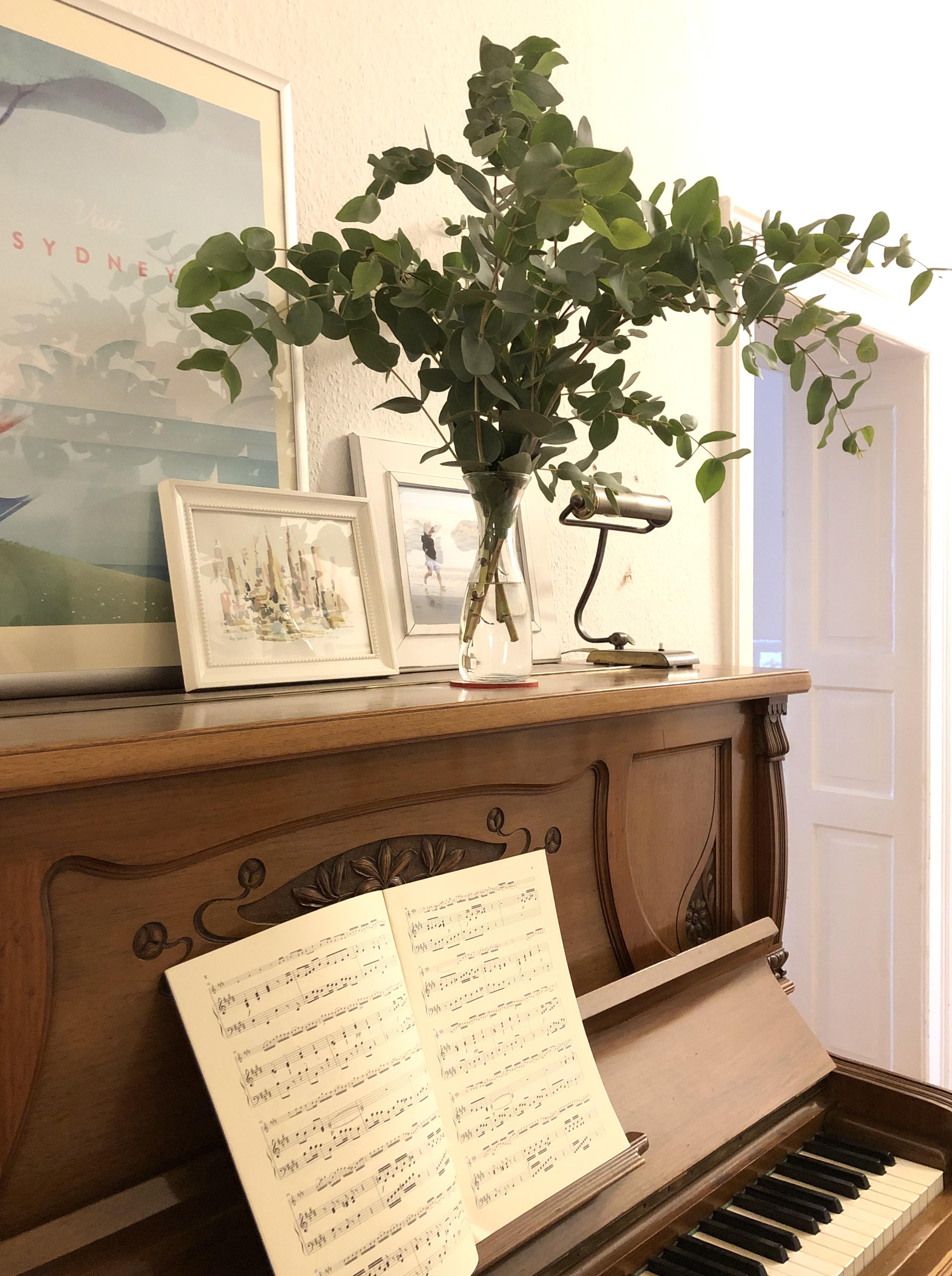 Wohnen, Pflanze, Naturholz, Weiß, Dekoration, Tür, Bilderrahmen, Klavier