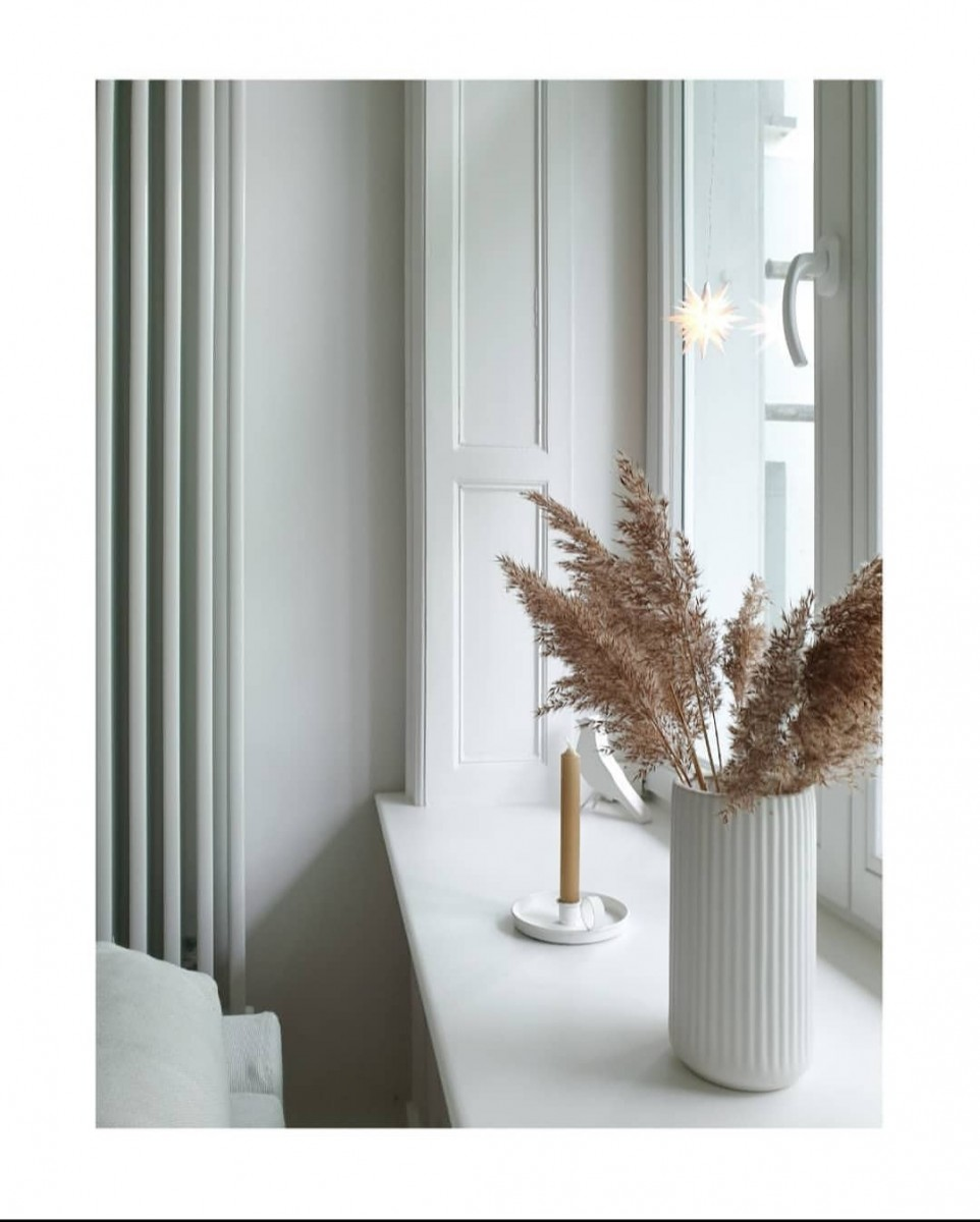 Wohnen, Naturholz, Modern, Licht, Weiß, Pflanze, Natur