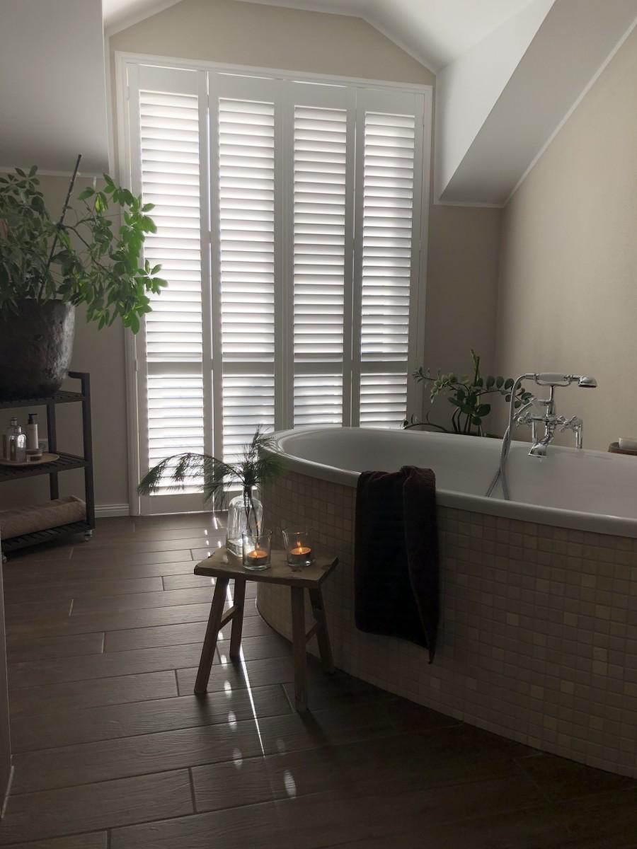 Wohnen, Modern, Licht, Weiß, Pflanze, Natur