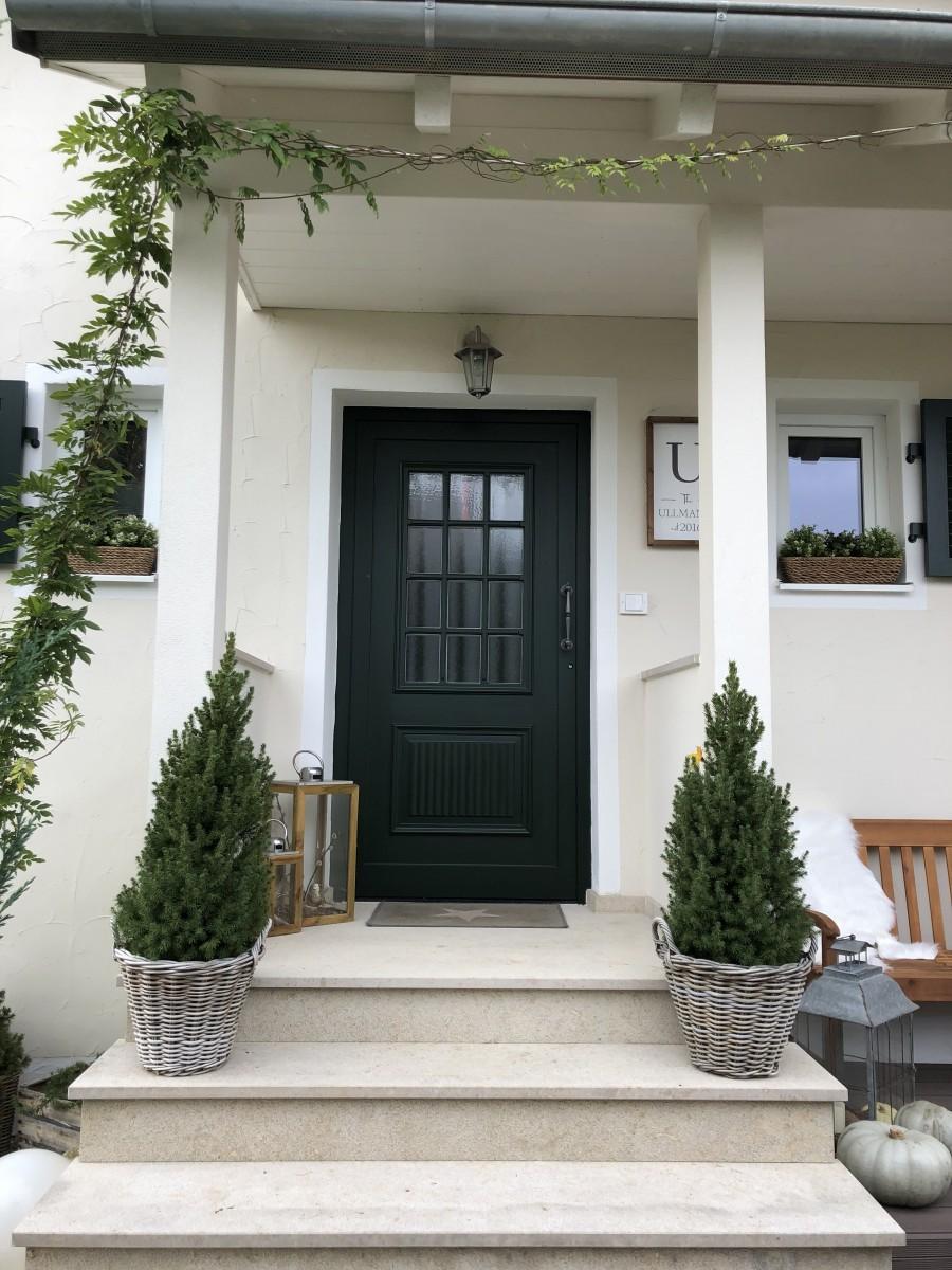 Garten, Tür, Wohnen, Weiß, Pflanze, Efeu