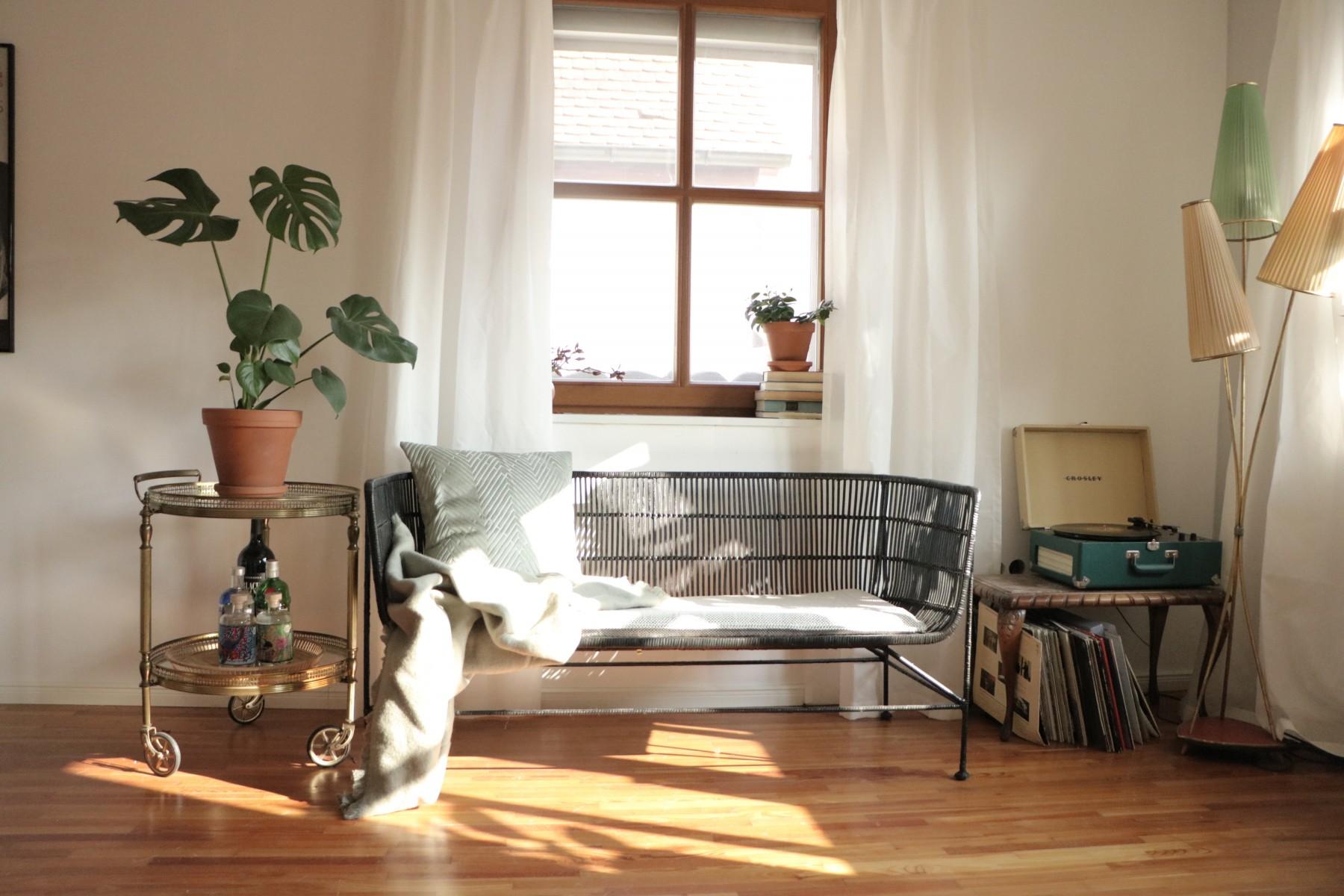 Stuhl, Fenster, Vorhang, Modern, Schrank, Pflanze, Weiß