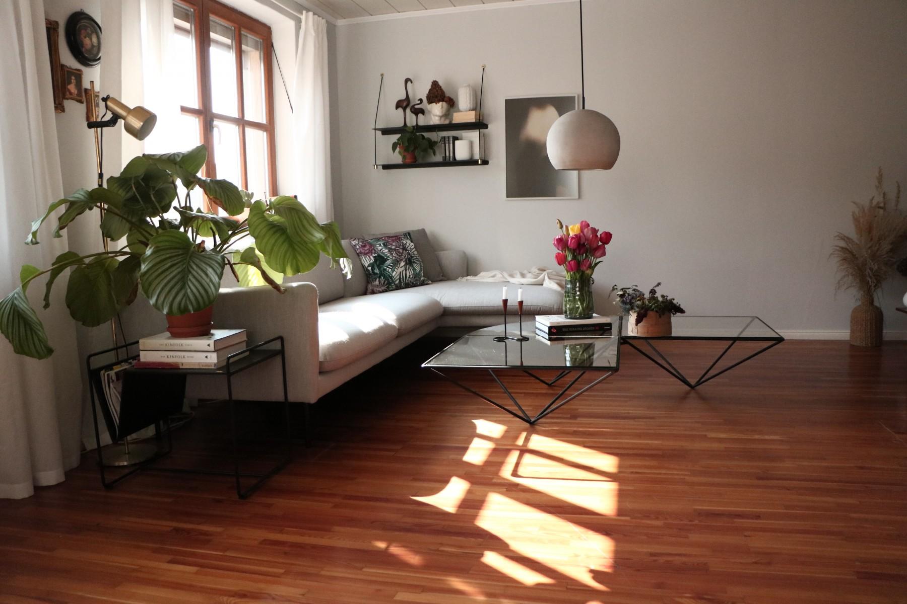 Fenster, Vorhang, Modern, Pflanze, Sofa, Weiß, Naturholz