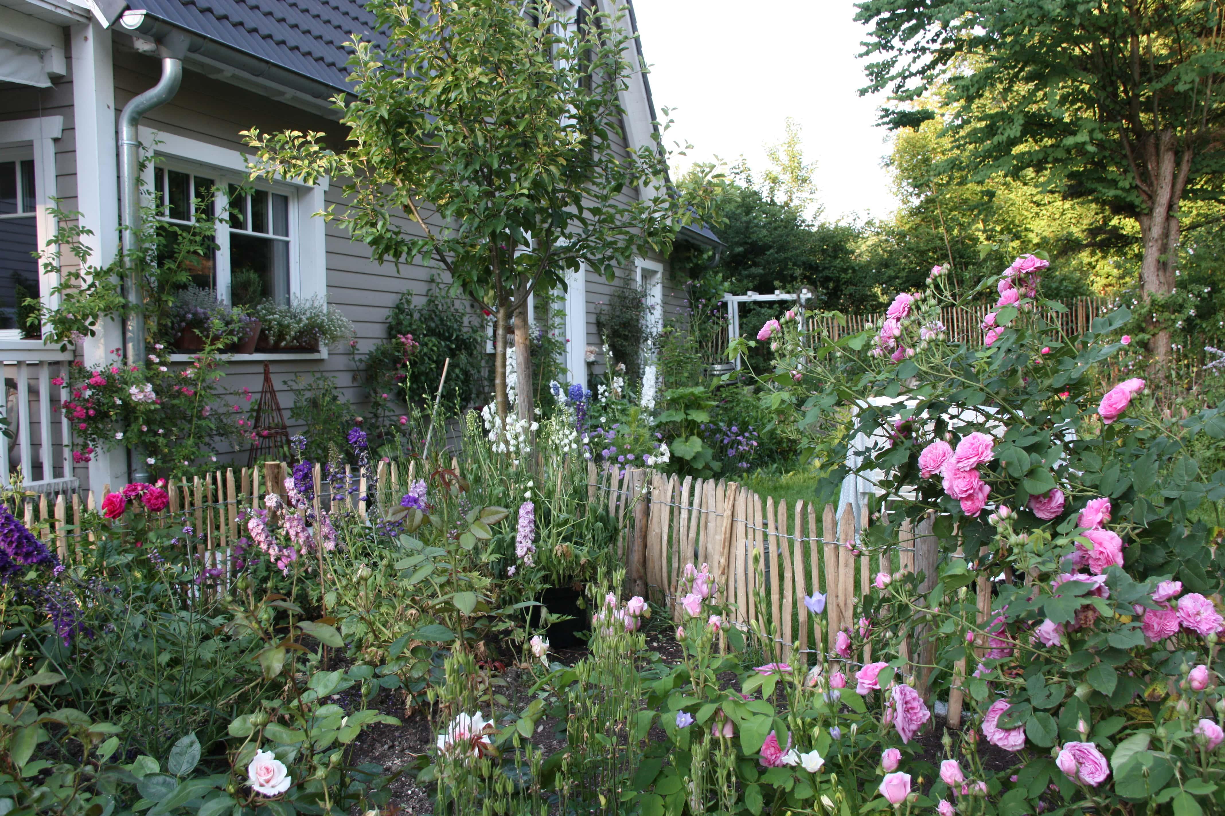 gartentrend 2021 cottage garden desmondo