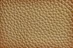 Muster Ledersofa- Bild Quelle Shutterstock