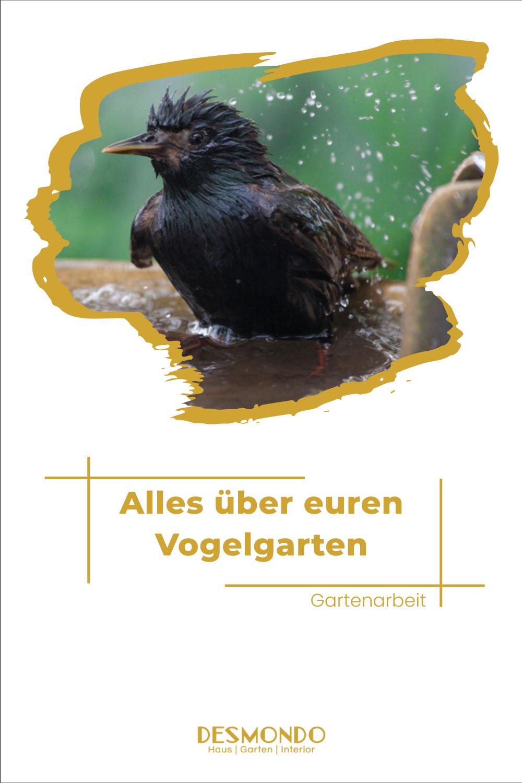 Alles über euren Vogelgarten outdoor inspirationen für Balkon und Garten einfach desmondo.de