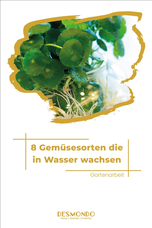 Outdoor - Inspirationen für Balkon und Garten - 8 Gemüsesorten, die ihr in Wasser wachsen lassen könnt  - einfach auf desmondo.de