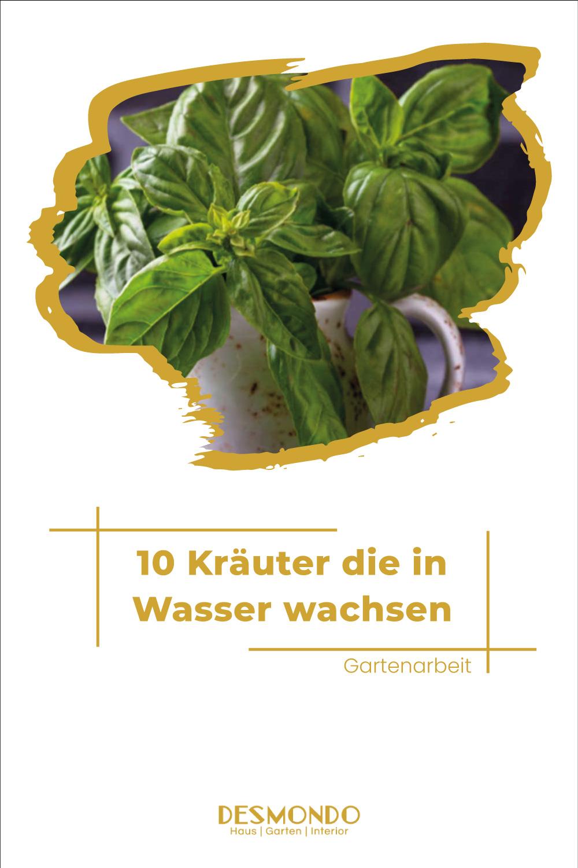 Outdoor - Inspirationen für Balkon und Garten - 10 Kräuter, die ihr in Wasser anbauen könnt  - einfach auf desmondo.de