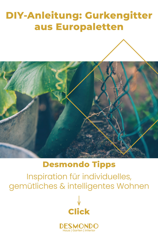 Outdoor - Inspirationen für Balkon und Garten - DIY-Anleitung: Gurkengitter aus Europaletten - so geht's einfach desmondo
