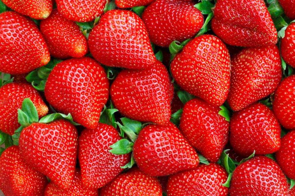 Outdoor - Inspirationen für Balkon und Garten - Mit diesen Früchten wird dein Balkon zum Obstparadies - so geht's einfach desmondo