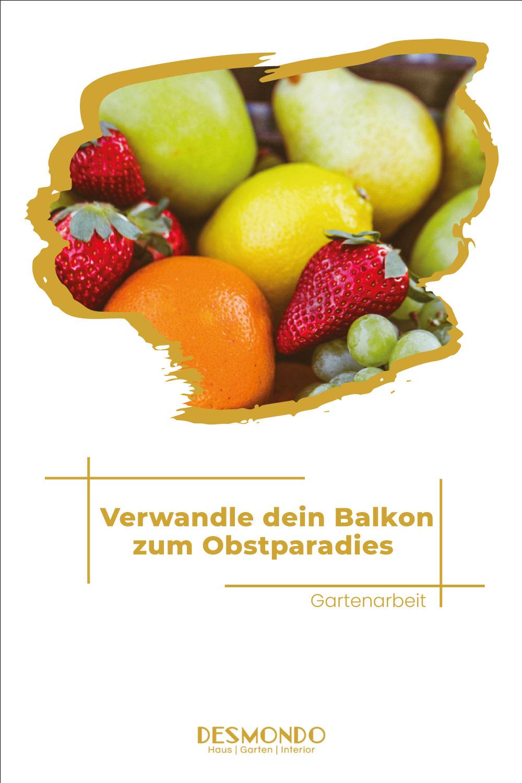 Outdoor - Inspirationen für Balon und Garten - Mit diesen Früchten wird dein Balkon zum Obstparadies - so geht's einfach desmondo