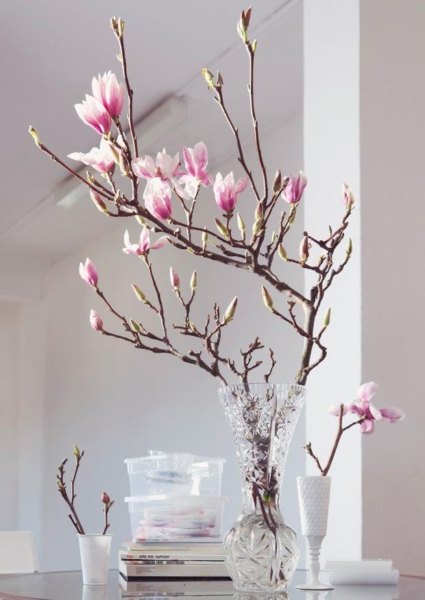 Indoor - Inspirationen für deinen Wohnraum - Kirschblüten Zweige (lat. Prunus serrulata) - so geht's einfach desmondo