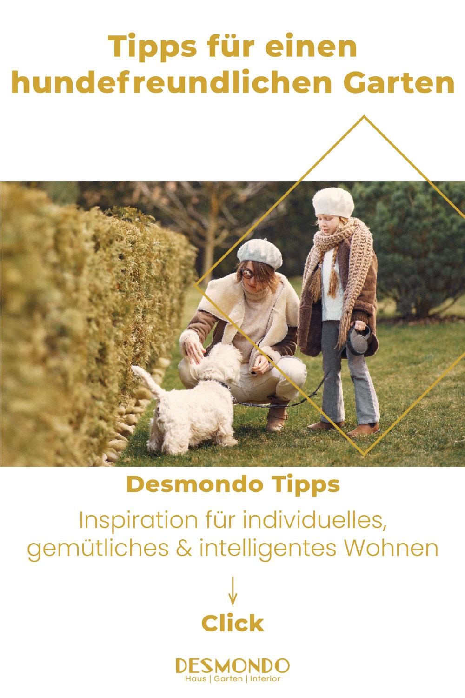 Outdoor - Inspirationen für Balkon und Garten - Tipps für einen hundefreundlichen Garten - so geht's einfach Desmondo online Magazin und Shop