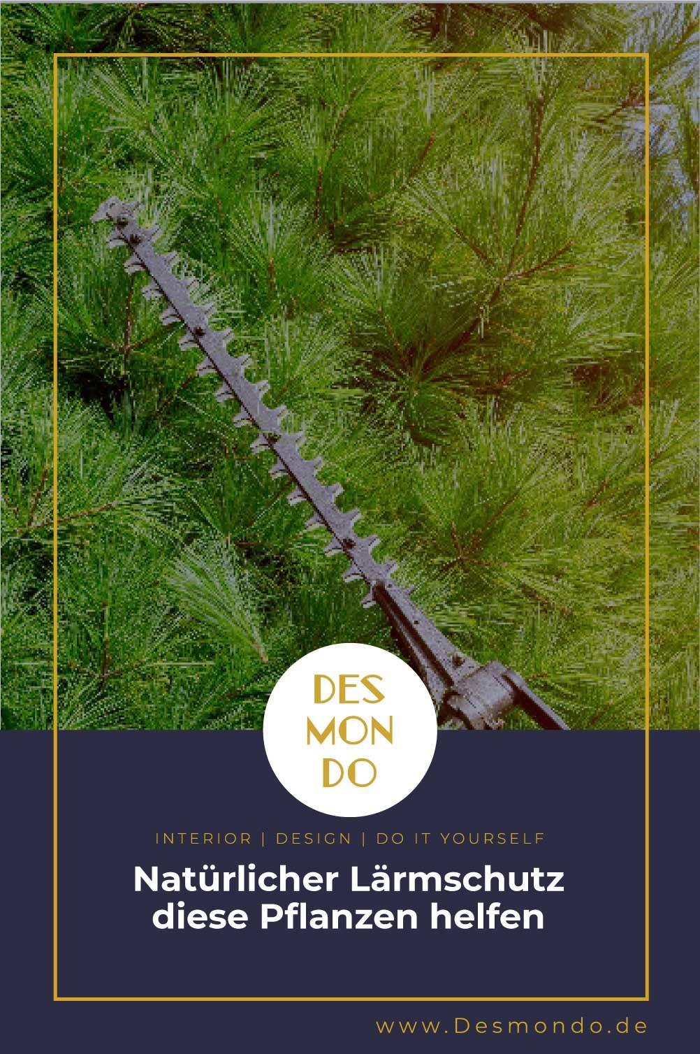 Outdoor - Inspirationen für Balkon und Garten - Natürlicher Lärmschutz – diese Pflanzen helfen- So geht's einfach desmondo dein online Magazin und Shop
