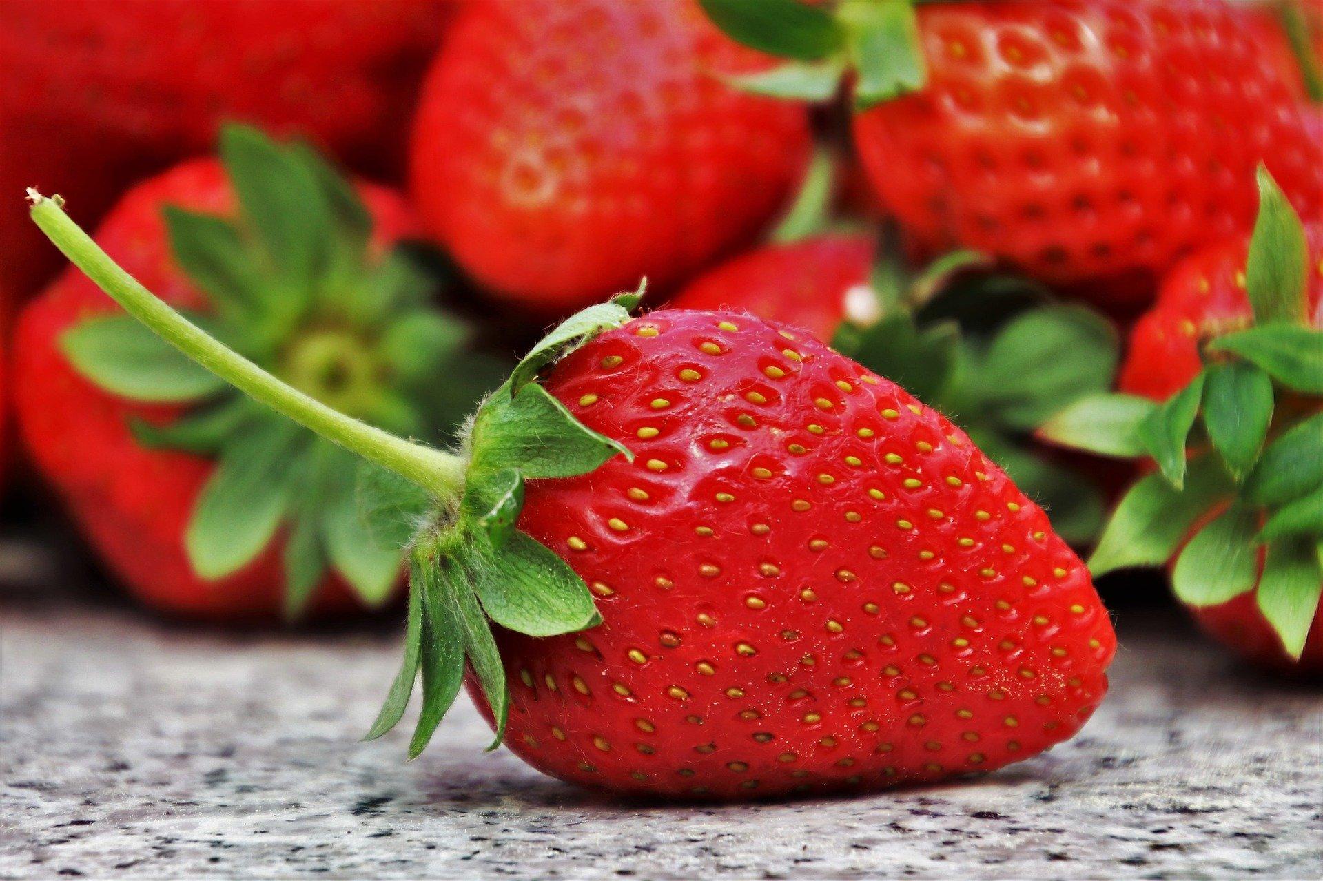 Aufgepasst - an alle Besserwisser: Kuriose Pflanzenfakten