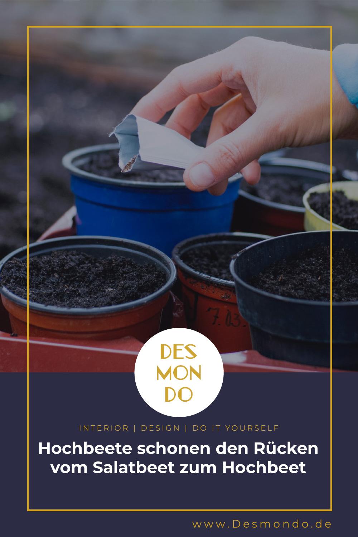 Indoor - Inspirationen für deine Wohnraum - Hochbeete schonen den Rücken - vom Salatbeet zum Hochbeet- so geht's einfach Desmondo dein online Magazin und Shop
