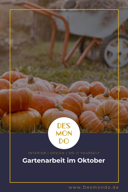 Outdoor - Inspirationen für Balkon und Garten - Gartenarbeit im Oktober- so geht's einfach Desmondo dein online Magazin und Shop