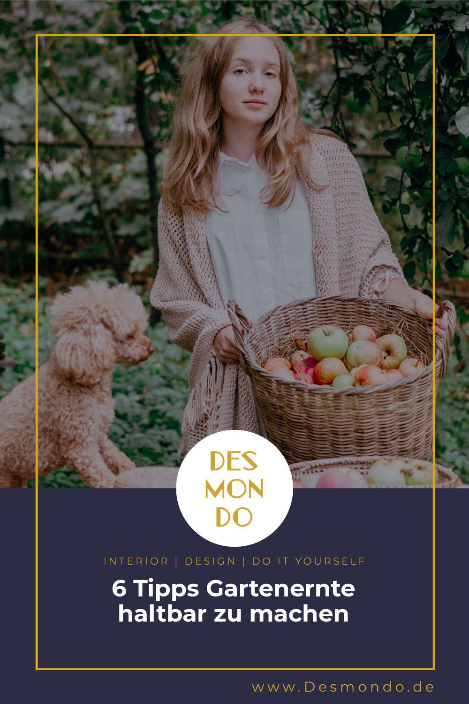 Outdoor - Inspirationen für Balkon und Garten - 6 Tipps Gartenernte haltbar zu machen- so geht's einfach Desmondo dein online Magazin und Shop