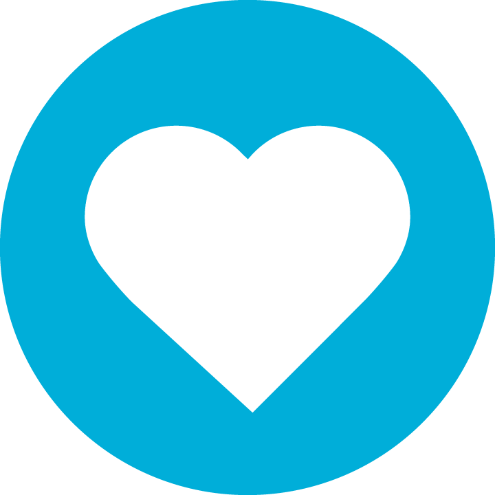 Make a Donation Icon