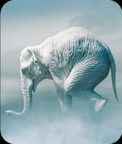 L'éléphant dans les nuages