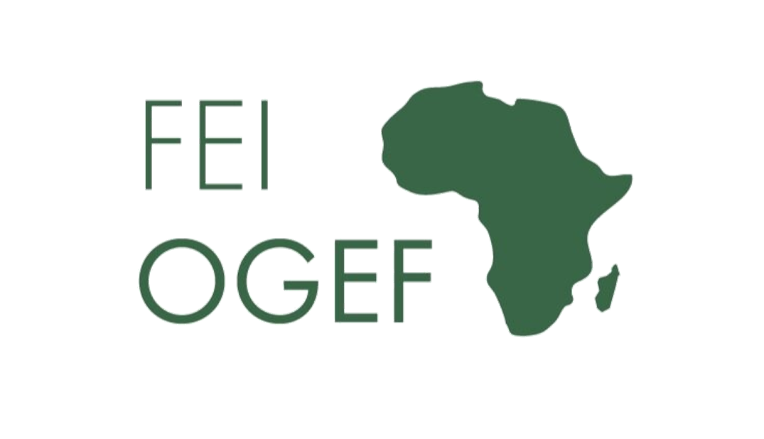 Off-Grid Energy Access Fund