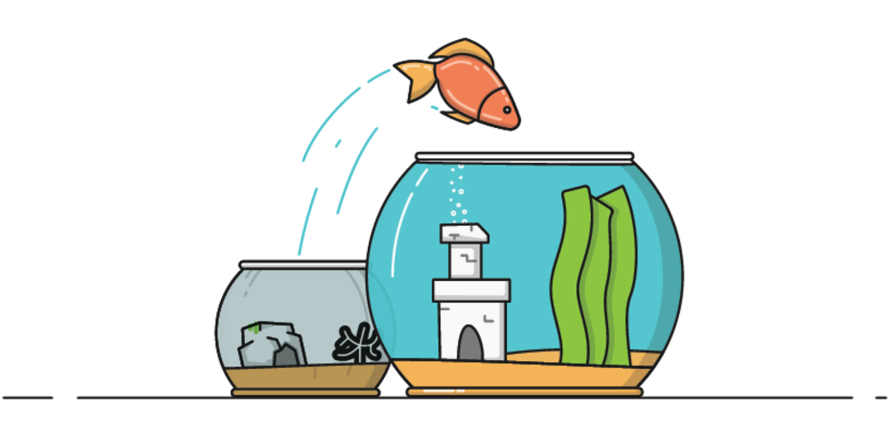Fisch springt in besseres Glas herüber