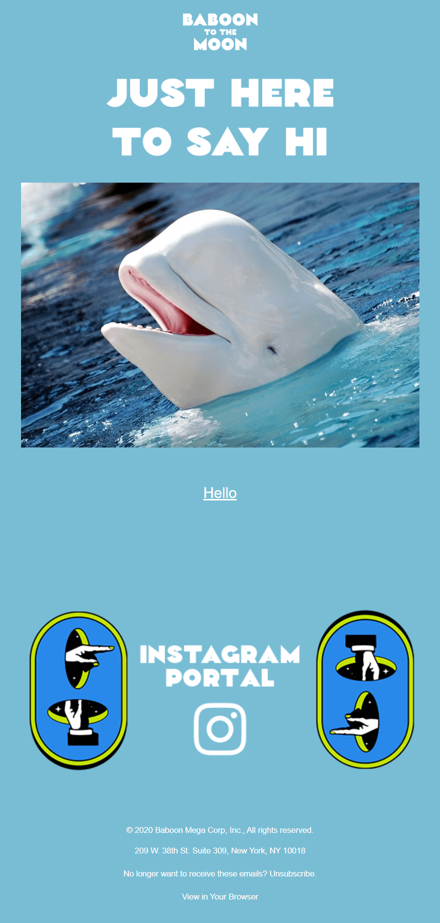 """a photo of a beluga whale popping its head out of the water. The headline says """"just here to say hi"""""""