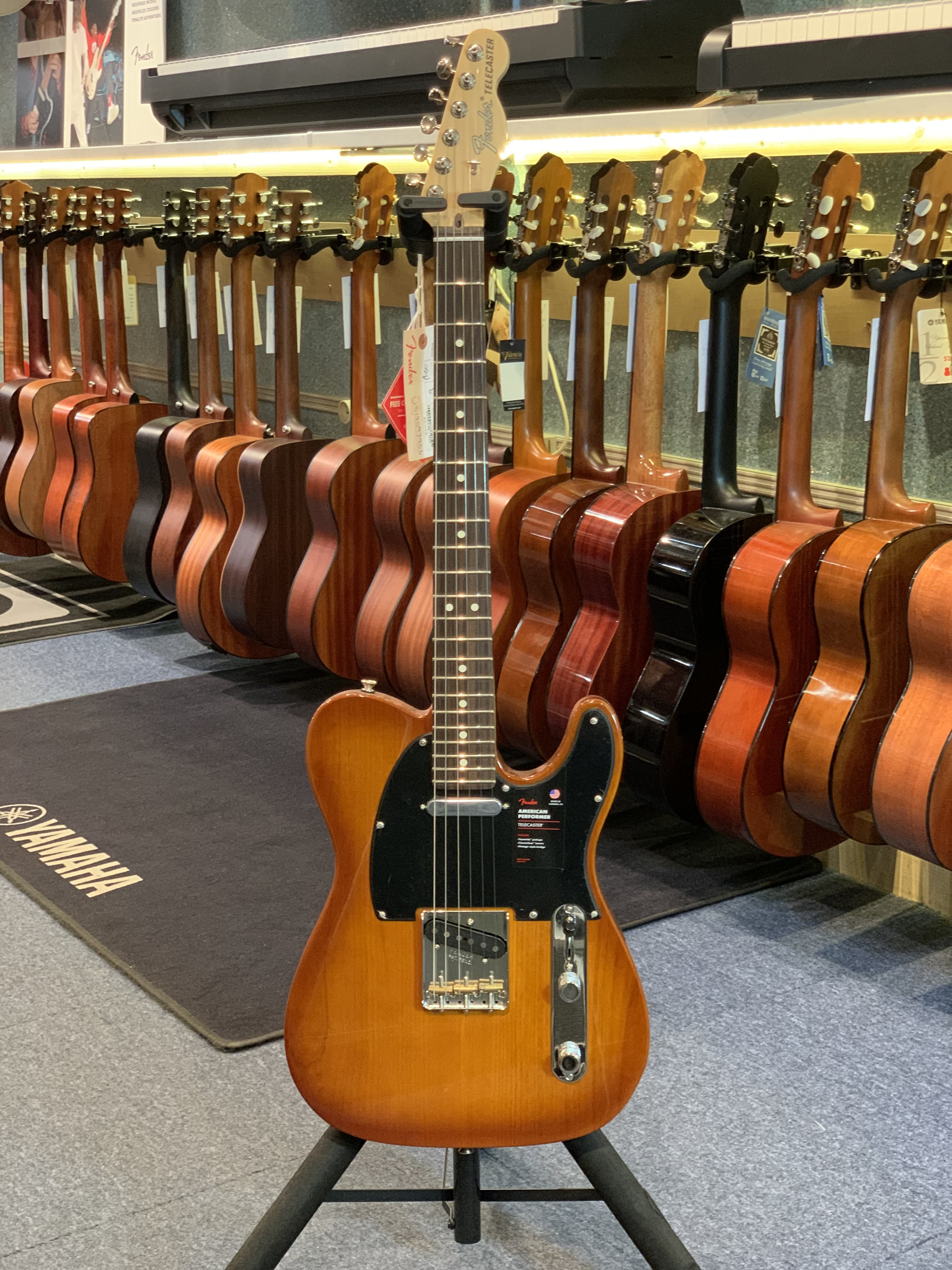 Fender TELECASTER AMERICAN PERFORMER
