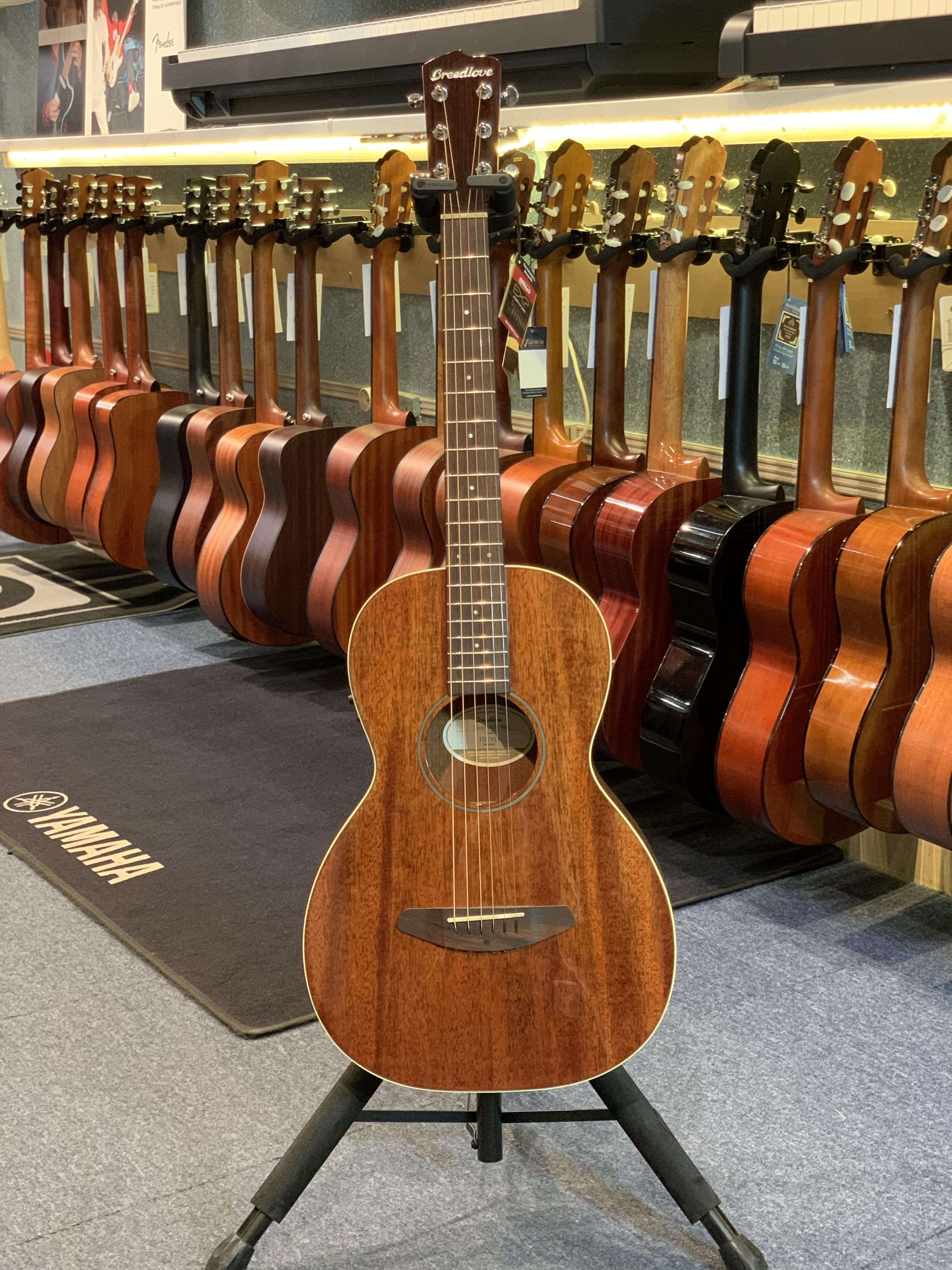 Breedlove PASSPORT PARLOR