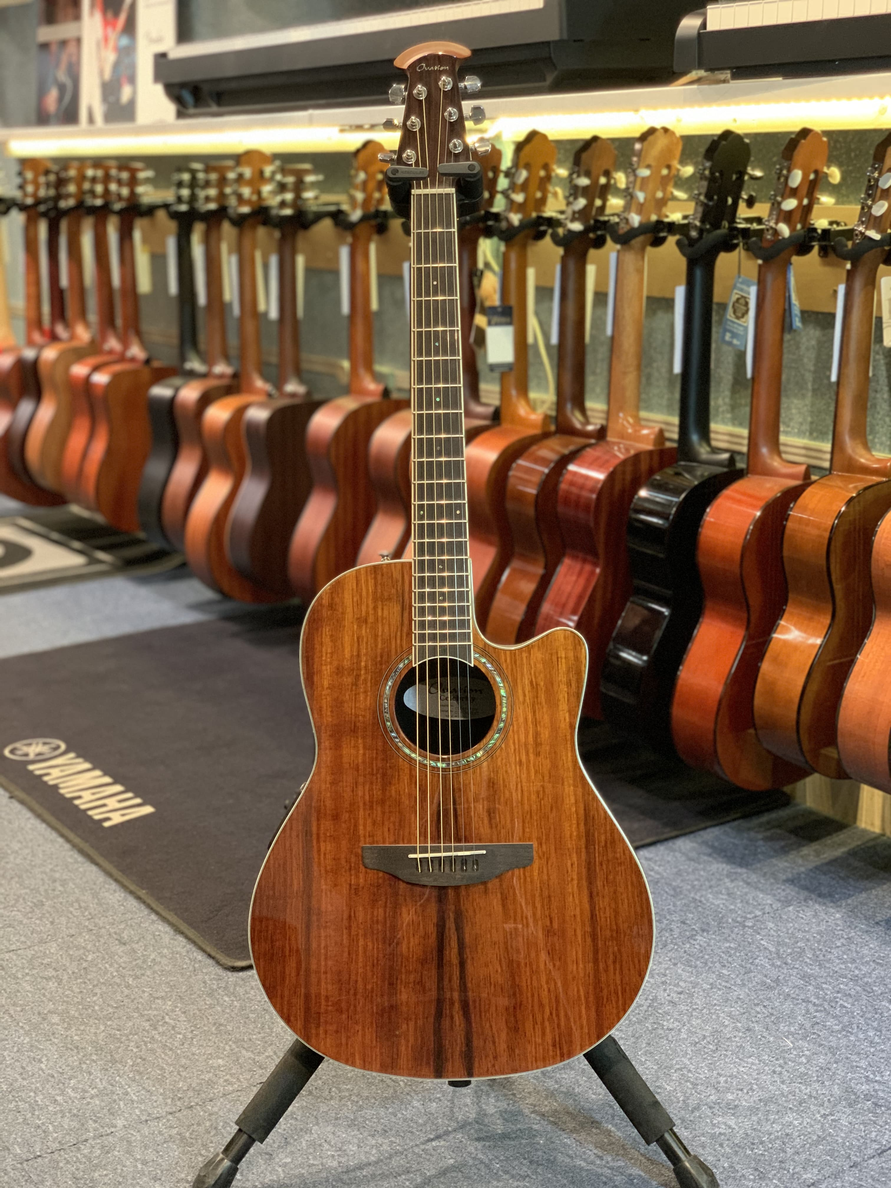 Ovation CS24P
