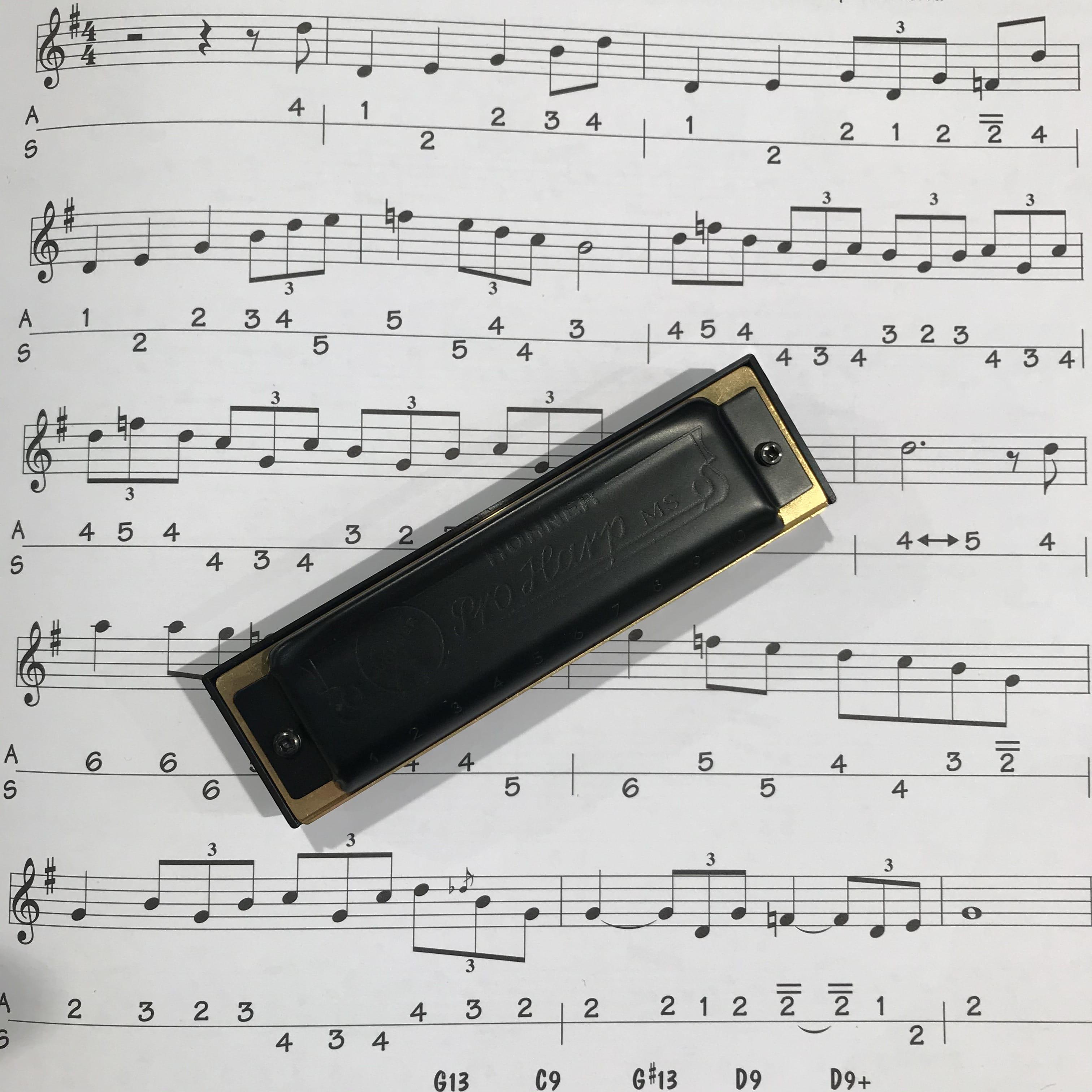 Hohner Pro Harp