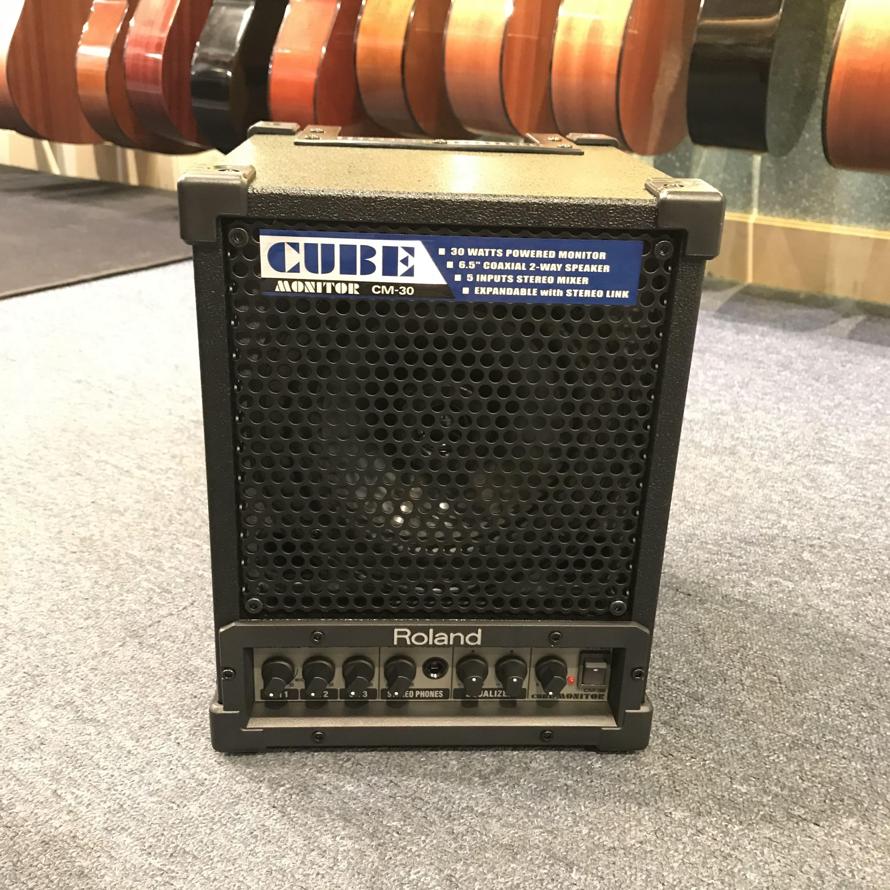 Roland Cube CM30