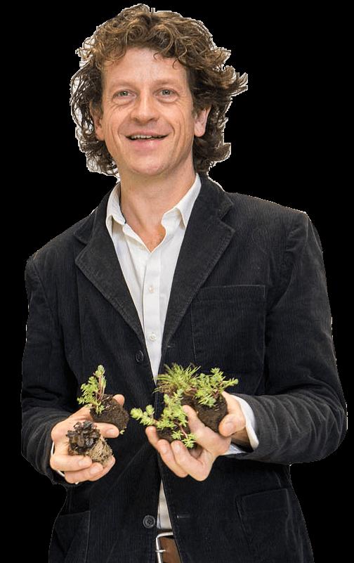 De oprichter Solar Sedum, Matthijs Bourdrez