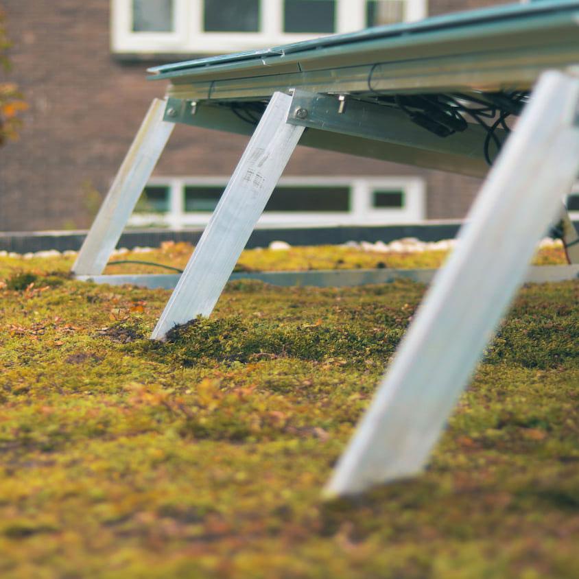 Close-up van de achterkant van een Solar Sedum Airframe