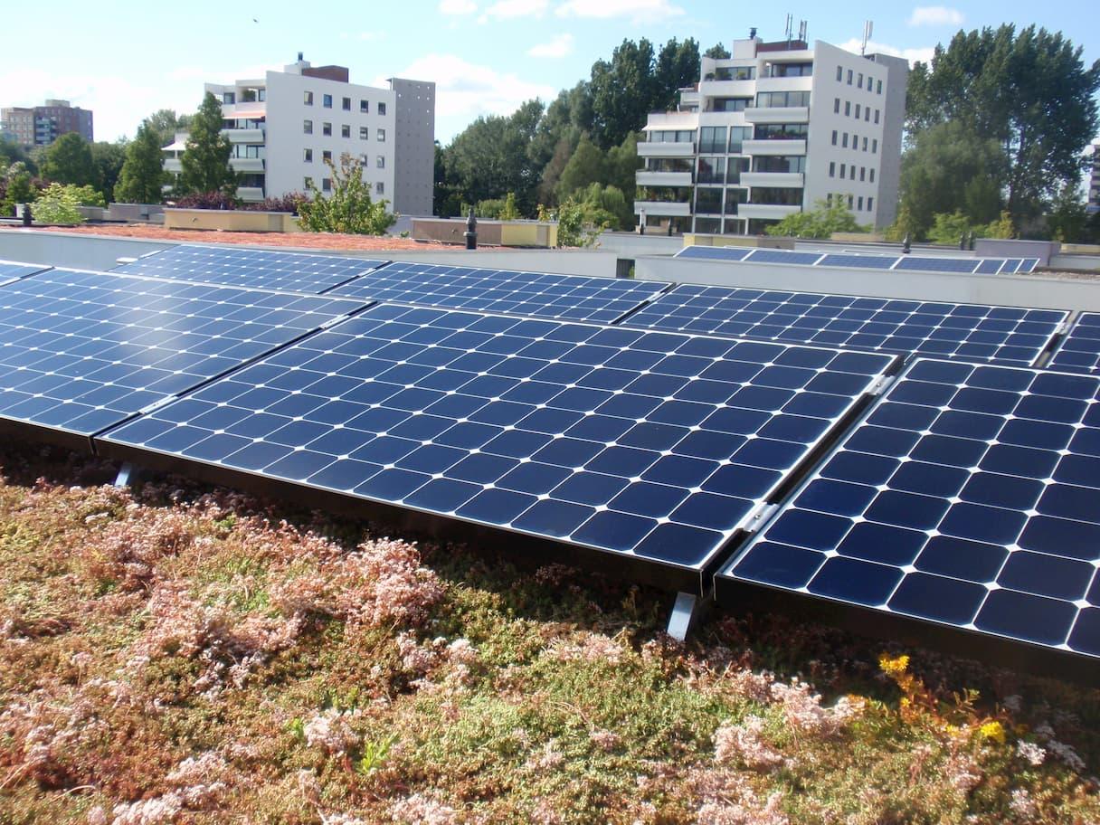 SunPower zonnepanelen boven een sedum dak in Utrecht
