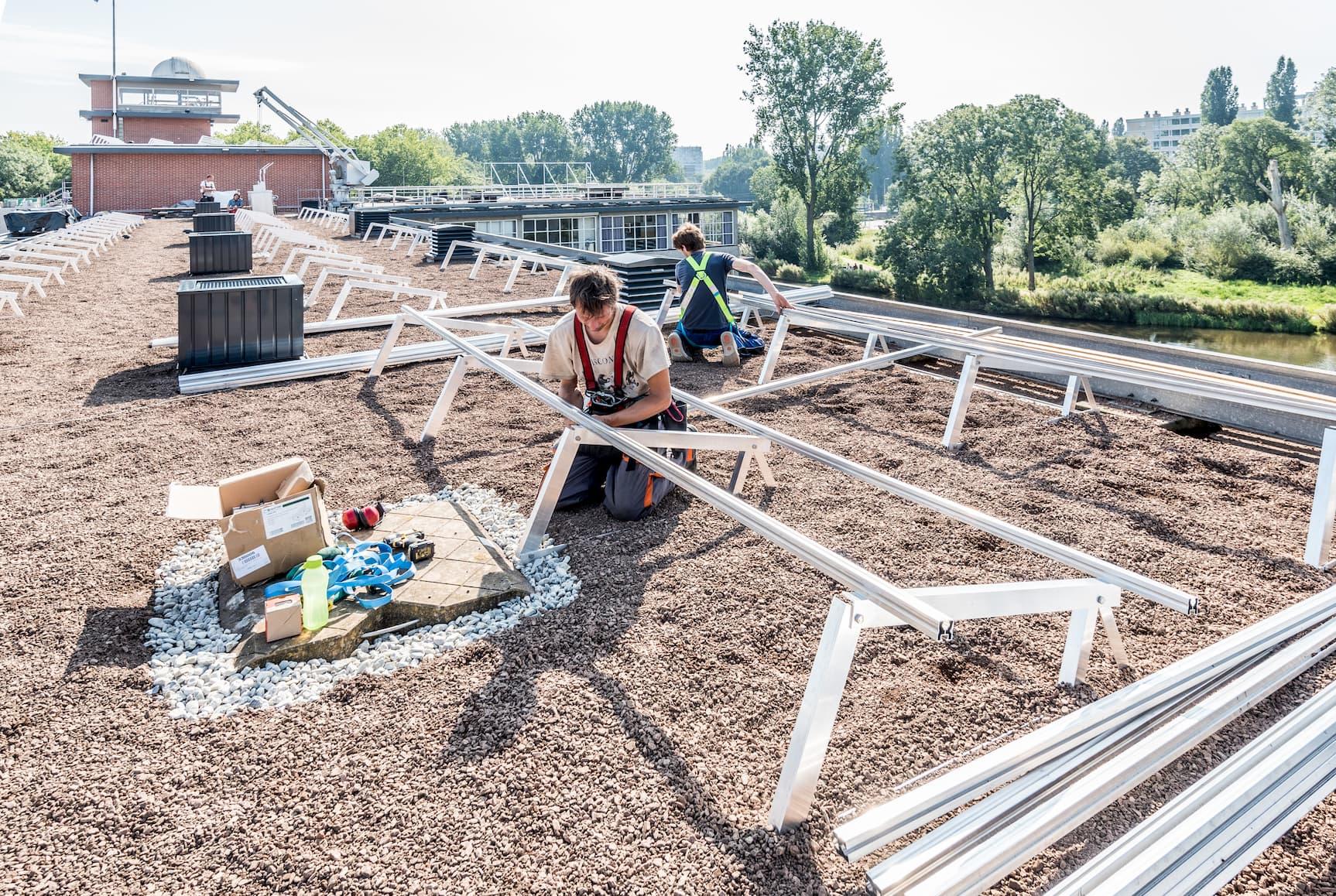 Medewerkers van Solar Sedum die onderhoudt verrichten aan zonnepanelen