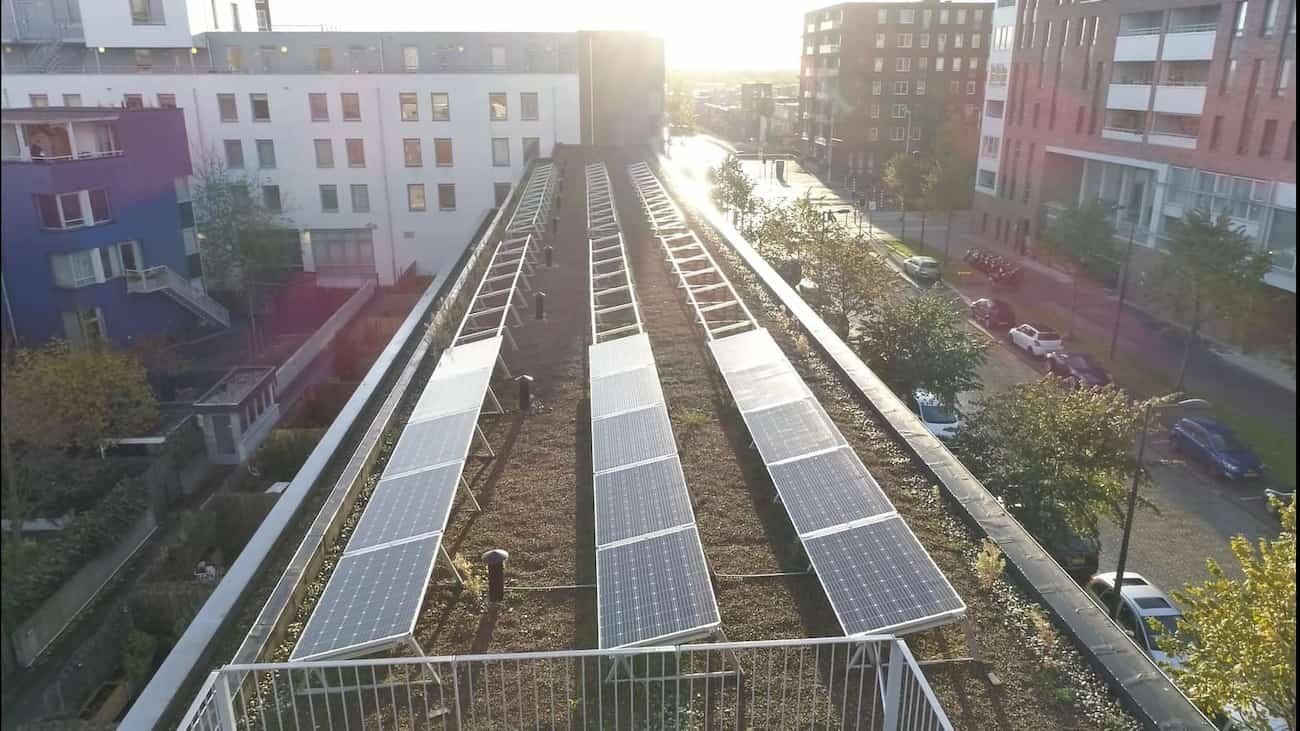 3 rijen van zonnepanelen die worden aangelegd bovenop een sedum dak